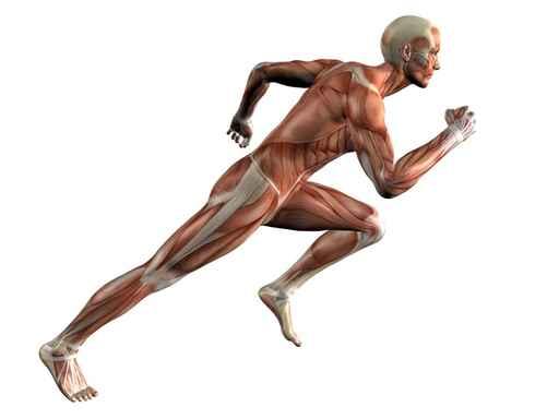 atleta entrenamiento cuestas padelgood Entrenamiento en cuestas para jugadores de pádel