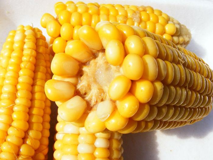 El maíz. Fuente de minerales para los deportistas