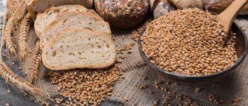 La importancia de los glúcidos en la alimentación de los jugadores de pádel